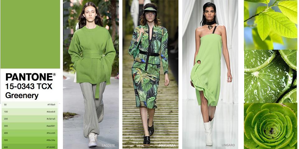 Modny kolor zielony, zielone jabłuszko, kiwi...
